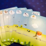 Spiel 2018 Cubirds by Catch Up Games cards